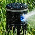 Sprinklers Australia